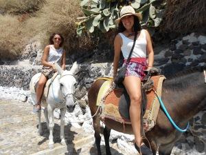 Santorini, Greece, Europe, Donkey, Donkey Ride