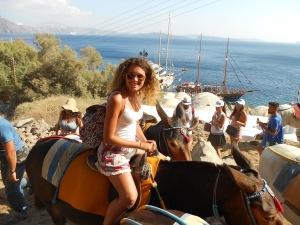 Santorini, Greece, Europe, Donkey, Donkey Ride, Oia