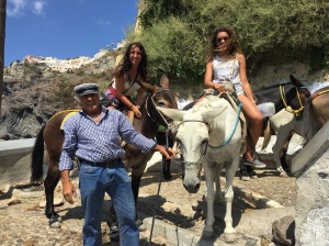 Santorini, Greece, Europe, Donkey, Donkey Ride