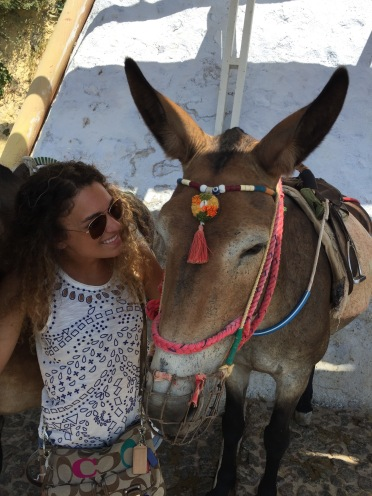 Santorini, Greece, Europe, Thira, Fira, Donkey, Donkey Ride